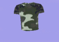 greencamoflaguemetshirt.jpg