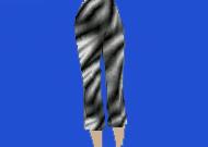 zebrapants.jpg