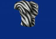 zebromanhirt.jpg